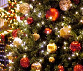 クリスマスに新たな彩りを添える創作生菓子